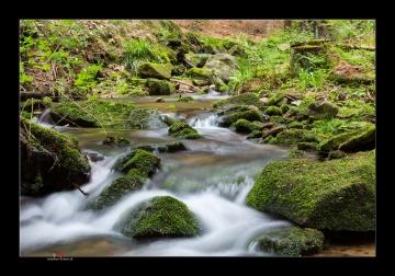 Bäche und Flüsse