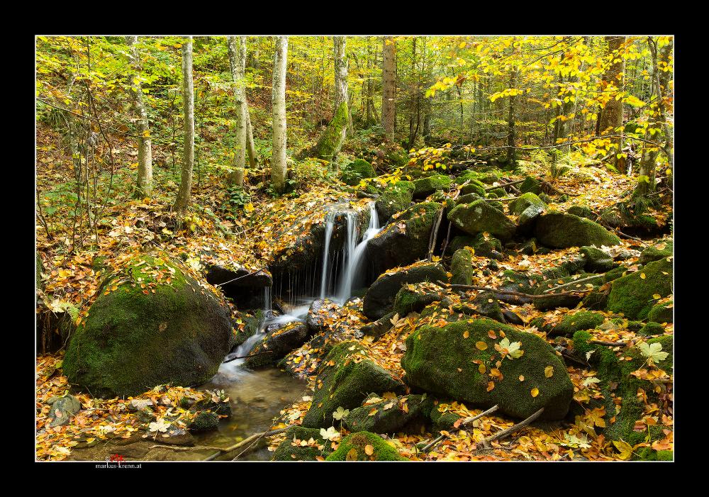 Weißenbach im Herbst