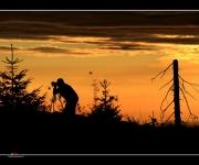 Fotograf im Dämmerlicht