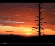 Sonnenaufgang IV