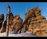 Dreisessel im Schnee