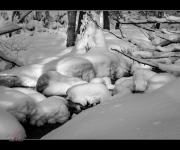 Hintenbach im Winter
