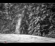 Schneeflockentanz